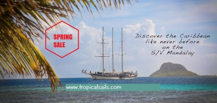 Windjammer Cruise Specials