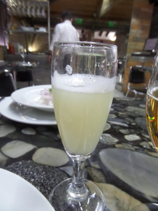 Pisco Sour chile eclipse tour 2019 Chile Eclipse Tour 2019 Preparation Pisco Sour