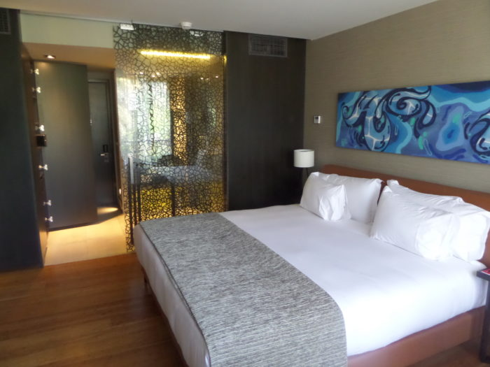 Ladera Boutique Hotel chile eclipse tour 2019 Chile Eclipse Tour 2019 Preparation Ladera Boutique Hotel Room View